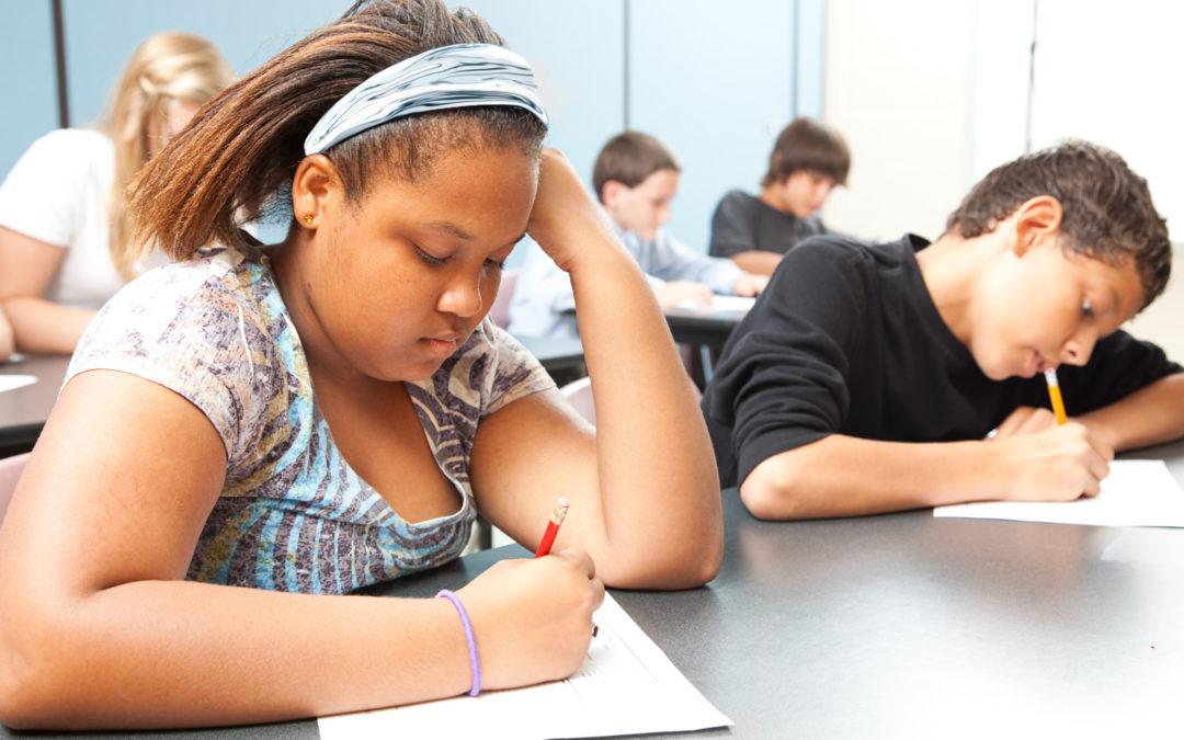 Lamont School Regionalization Commission Will Study Costs, But Not School Performance