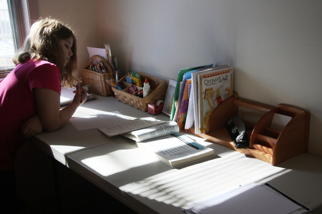 Parents, teachers struggle to cope with working and schooling their children from home